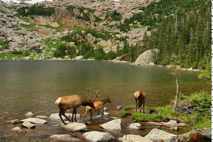 National Park HIKING TOURS | Timberline Adventures : Fully supported hiking tours in Rocky Mountain National Park and over the continental divide.  Committed to adventure for over 35 years – we know adventure!
