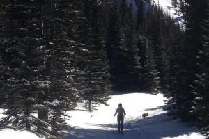 Rocky Mountain Adventures - winter & summer rental