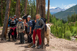 Wildland Trekking - tours in RMNP