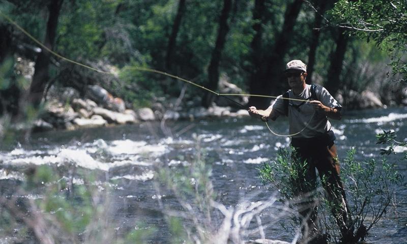 Estes Park Fishing