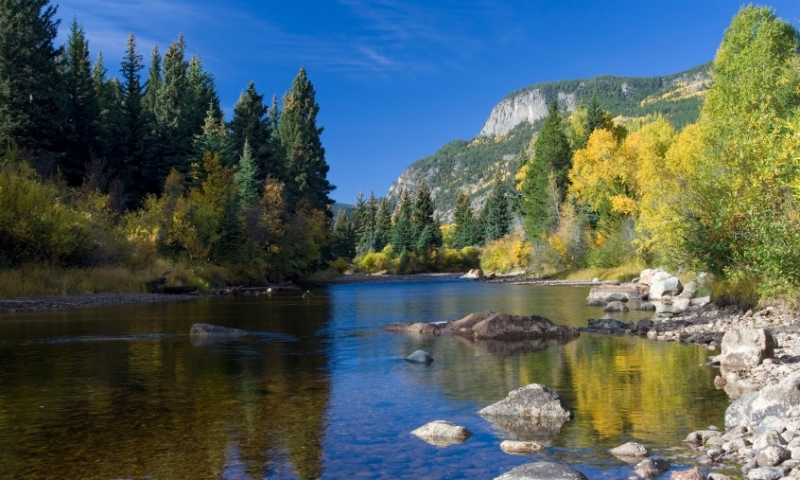 Cache la Poudre River in Roosevelt National Forest