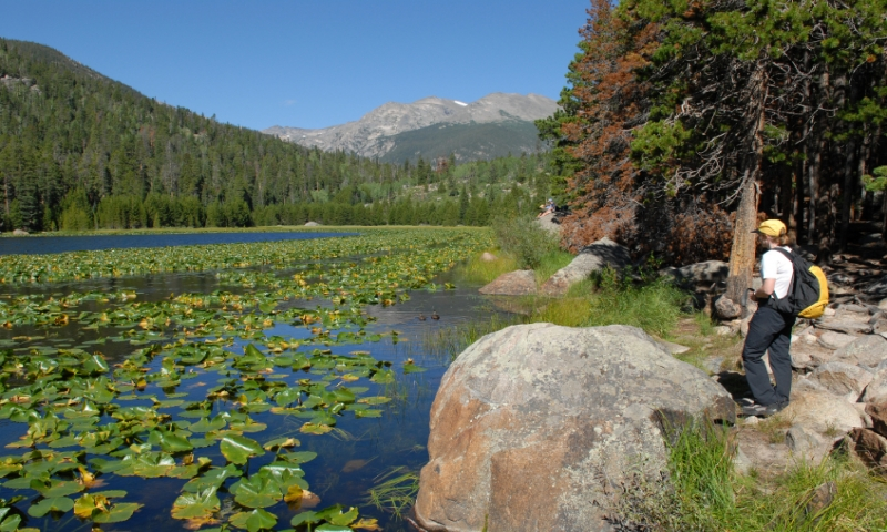 Hiking near Cub Lake