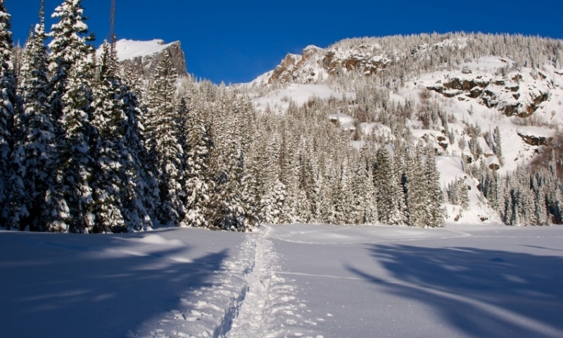 Ski Tracks in Rocky Mountain National Park