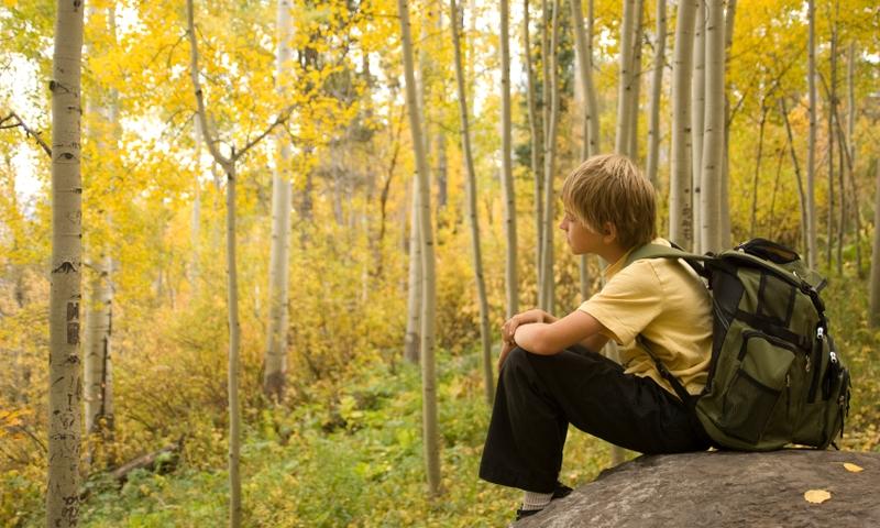 Kid Family Kids Hiking Trail Aspens Colorado